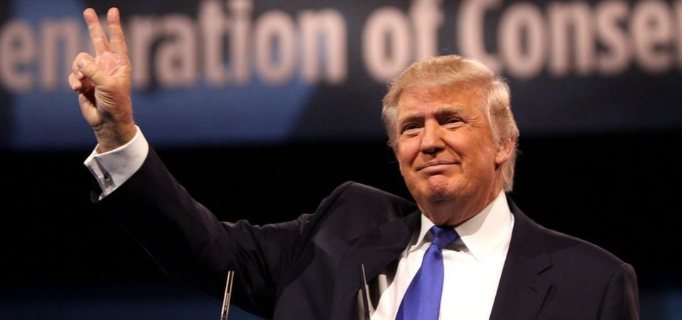 Trump: Politician of Action