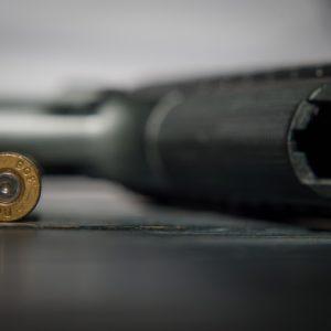 Gun Control Advocates Appeal to FL Legislature on Gun Reforms