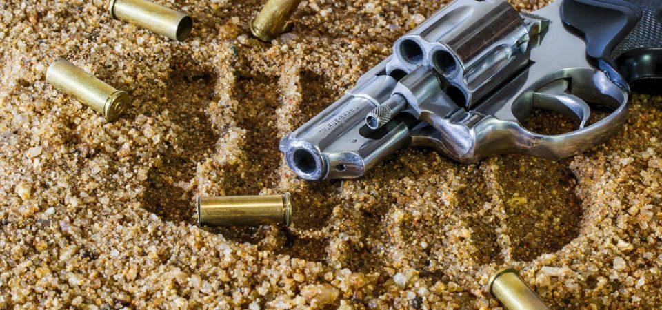Florida Senate Crossfire:  10 of 11 Gun Bills Bite the Bullet
