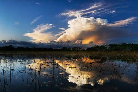 Florida Senate Passes Negron Reservoir Proposal To Eliminate Water Pollution