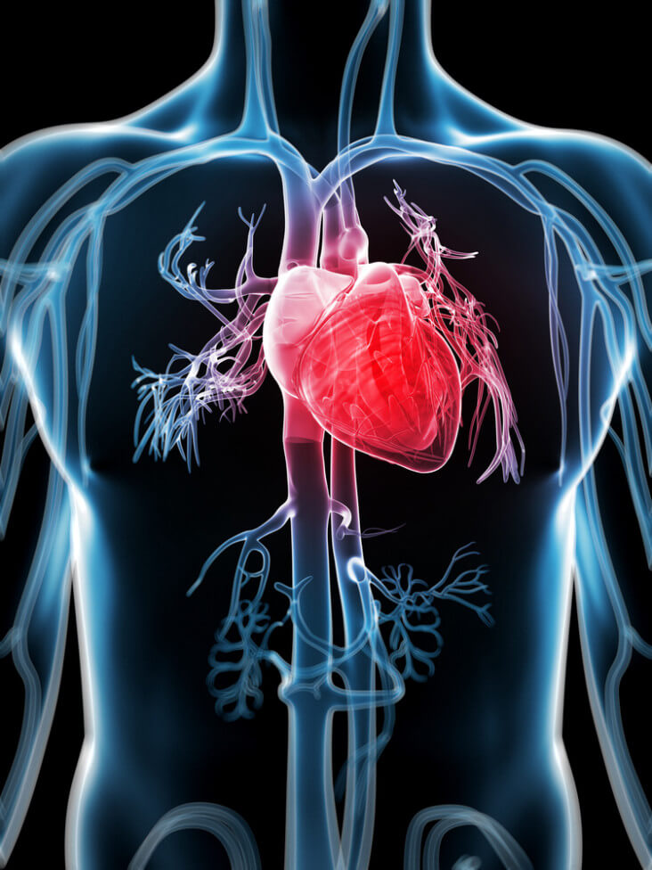New Heart System Has Potential To Dramatically Reduce Open