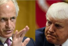 Sen. Corker calls Trump White House adult day care center