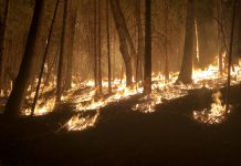 California wildfires--Medocino Complex Fire