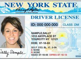 New York Sample Driver's License