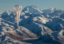 Loon Balloon