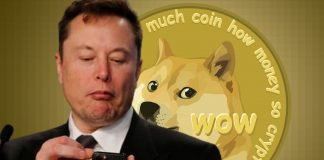 Elon Musk holding a phone, with a dogecoin wallpaper in the background
