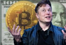 Elon Musk, Bitcoin in the background