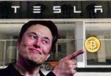 Bitcoin - Tesla CEO Elon Musk