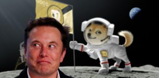Elon Musk CEO of Tesla, with a picture of Dogecoin cryptocurrency on te moon